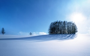 snow-covered-field_1920x1200